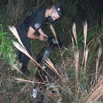 Una moto robada en el camping Carnes de Puerto Rosario fue recuperada por policías