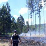 Se registraron dos incendios en Guaraní y Florentino Ameghino