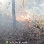 Sofocaron un incendio en Colonia Alberdi