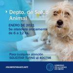Atención en el Departamento de Salud Animal