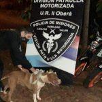 La Policía encontró a «Athenas», una Pitbull robada en el barrio Cien Hectáreas