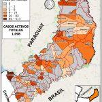 COVID-19: radiografía de la situación epidemiológica en Misiones