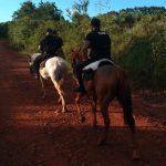 Continúan los operativos rurales de la División Montada en los municipios de Los Helechos y Oberá