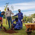 Por el día internacional de la tierra plantan árboles en espacios públicos