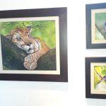 """Exposición artística """"El Color y el mundo Animal"""""""