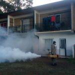 Tareas de prevención del Dengue