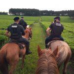 Intensifican los operativos rurales en la provincia