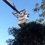La CELO continúa realizando obras para optimizar el servicio de Energía Eléctrica en Oberá