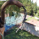 Hurtaron ochenta metros de cable de cobre en Bº Picada Sargento Cabral