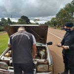 Interceptaron a un automovilista que cayó en un control vehicular con una cédula falsa