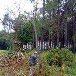 Personal de Redes Rurales de la CELO realizó reparaciones de emergencia en F. Ameghino y Paraje Zacarías