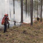 Continúan los incansables trabajos para sofocar incendios en toda la Provincia