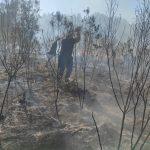 Sofocaron seis incendios en Oberá y localidades vecinas