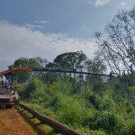 Redes Rurales reemplazó elementos de línea averiados en Panambí